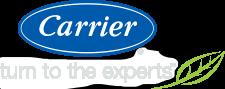 Carrier